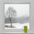 Winter Landscape Seen Through ...