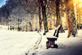 Winter landscape with snow covered park alley Royalty Free Stock Photo