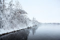 Winter landscape with snow covered trees on lake shore Royalty Free Stock Images