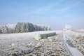 Winter landscape and snow wrapped trees in Sumava, Czech republic,
