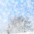 Winter landscape with snowfall and trees on hill Royalty Free Stock Images
