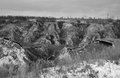 Winter landscape with soil erosion in black and white version gloomy Stock Image