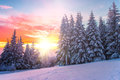 Winter Landscape On A Sunset. ...