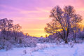 Winter landscape with sunset and the forest Royalty Free Stock Photo