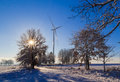 Winter landscape trees snow covered fields windmills Royalty Free Stock Photo