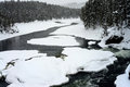 Winter Madison River Yellowstone Royalty Free Stock Photo