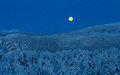 Winter moon Royalty Free Stock Images