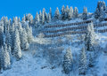 Winter mountain (Austria, Tyrol). Royalty Free Stock Photo