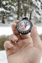 Winter Mountain Nordic Walking...