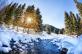 Winter mountain river forest with in the mountains on sunny day Royalty Free Stock Photos