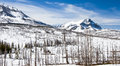 Winter Mountains of Northern Montana and Canadian Border Royalty Free Stock Photo