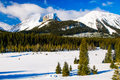 Winter in the mountains snowy scenery canadian rocky kananaskis country alberta canada Royalty Free Stock Photos