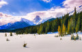 Winter in the mountains snowy scenery canadian rocky kananaskis country alberta canada Stock Photo