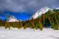 Winter in the mountains snowy scenery canadian rocky kananaskis country alberta canada Royalty Free Stock Images