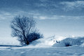 Winter nature snowstorm in countryside Royalty Free Stock Images