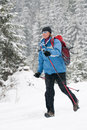 Winter nordic walking Royalty Free Stock Images