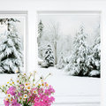 Winter outside flowers inside Royalty Free Stock Image