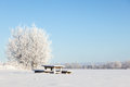 Winter park bench in deep snow in the field Stock Photography