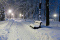 Winter park full of snow. Royalty Free Stock Image