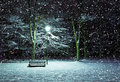 Winter park at night Royalty Free Stock Photos
