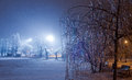 Winter park night scene with snow and icy trees next to frozen lake Stock Photos