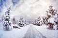 Winter park with snow trees benches and road at blue cloudy sky Stock Photography