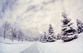 Winter park with snow trees benches and road at cloudy sky Royalty Free Stock Photography