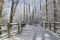 Winter path landscape with which goes through the forest covered in frost wooden fence on the side of the road and walking people Stock Photo