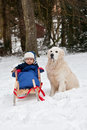 Winter portrait of boy and his dog sitting on sledge Royalty Free Stock Image