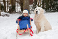 Winter portrait of boy and his dog on sledge Royalty Free Stock Image