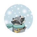 Winter raccoon christmas card cute little in scarf with guitare background with snowflakes icon or chritsmas Stock Photos