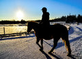 Winter rider ii woman riding in cold day snowy country road Stock Photos
