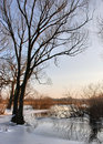 Winter by the river Stock Photos