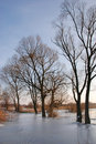 Winter by the river Stock Photography