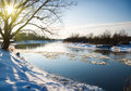 Winter river and trees in season Royalty Free Stock Photo