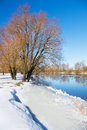 Winter river and trees in season Stock Image