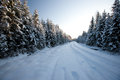 Winter road country side fir trees latvia baltic state europe Stock Photography