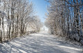 Winter road on a sunny frosty day with blue sky Stock Photo