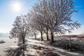 Winter road on a sunny frosty day with blue sky and sun Stock Images