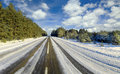 Winter road to wood Royalty Free Stock Photo