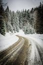 Winter road in the woods Royalty Free Stock Image