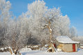 Winter rural landscape beautiful with trees Royalty Free Stock Photography