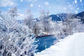 Winter rural landscape with river and trees covered with snow Royalty Free Stock Photo