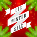 Winter sale big ribbon on red background and spruce Royalty Free Stock Image