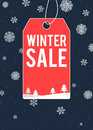 Winter sale themed poster design