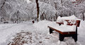 Winter scene with bench in park covered snow on alley Royalty Free Stock Images