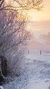 Winter scene on a dutch dike in the morning Stock Photos