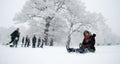 image photo : Winter scene