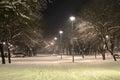 Winter Scene of a Park