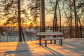 Winter scene, table, bench and trees in the snow on the sunset. Royalty Free Stock Photo